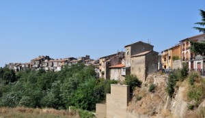 Cellere - VT (Panorama)