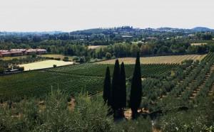 Panorama Verso Soiano