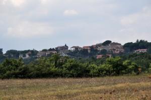 San Lorenzo Nuovo - VT (Panorama)