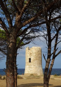 La Torre san Giovanni tra i pini