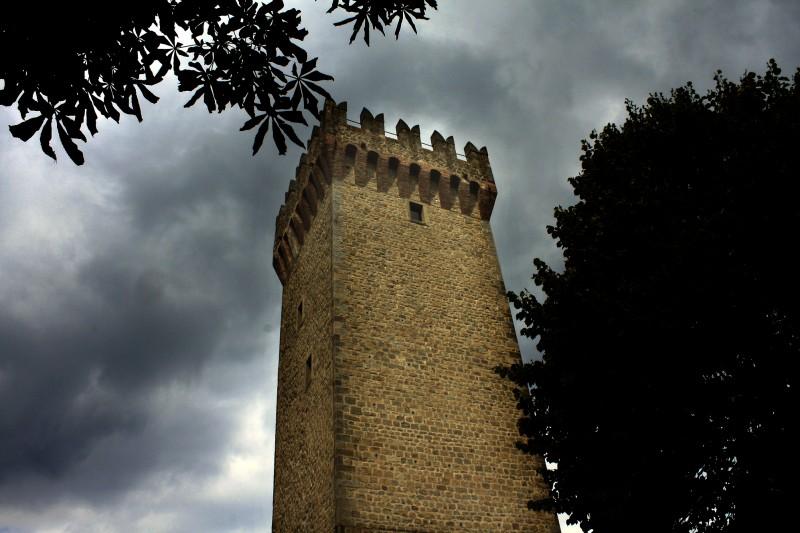 ''Il Castello di Montese'' - Montese