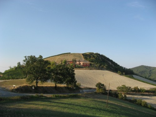 Rocca Susella - Collinetta