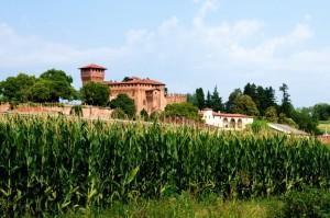 Il castello di Barengo