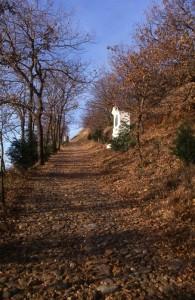 verso il Musinè, comune di Caselette, bassa val Susa