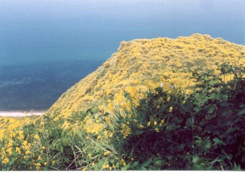 Gabicce Mare - Casteldimezzo e il suo mare