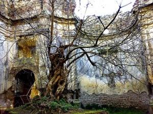 Antiche rovine Canale Monterano