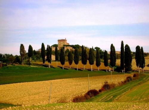 Pienza - Castel Bibbiano Cacciaconti circondato dai cipressi