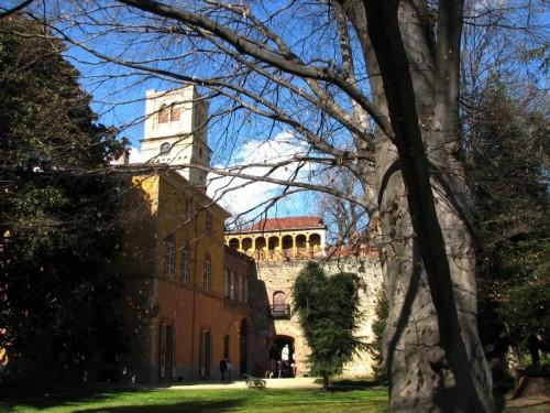 Rivalta di Torino - castello di rivalta torino