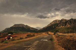 Le pendici del Monte Albo