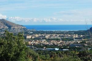 Palermo tra i giardini