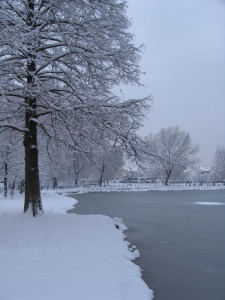 Buccinasco visto dal parco sotto la neve