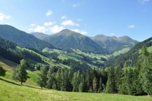 Tra il verde dei prati e dei boschi