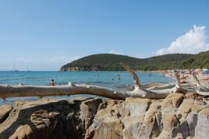 La spiaggia di Cala Violina…