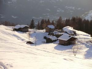Carnale nella neve