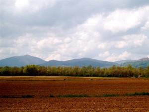 Valle rosso porpora