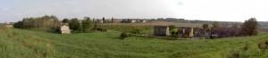 Alla destra del Po-Alberone