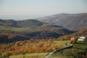 Marezzane - Marano di Valpolicella