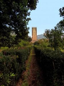 Torre del Castello di Ninfa - amena prospettiva -
