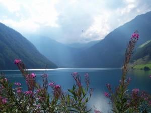 lago vernago