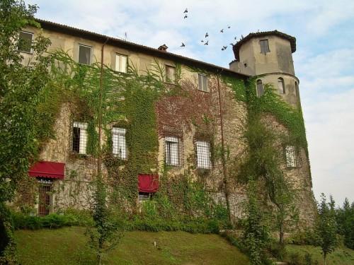 Castiglione d'Adda - Stormo all'attacco!