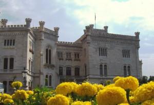 i fiori e il castello