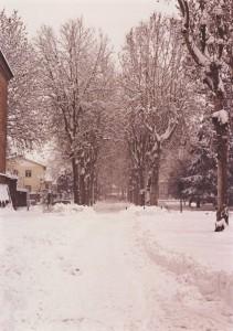 La Nevicata del 2006