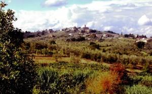 Tizzana, panorama