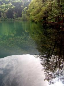 riflessi del lago