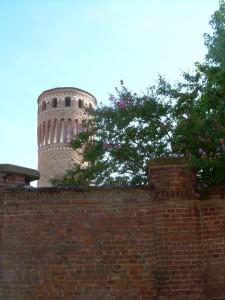 Castello di Quinto in fiore…..