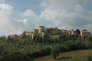 fra gli olivi