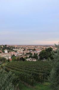 Panorama di Conegliano1