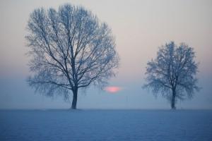 sorge l'alba …..