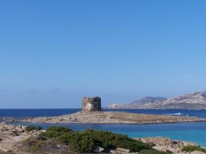Capo Falcone - Torre della Pelosa