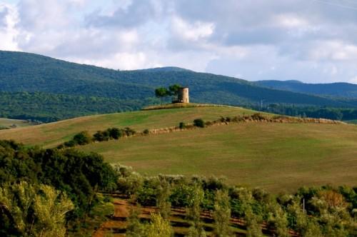 Bibbona - Torre Solitaria