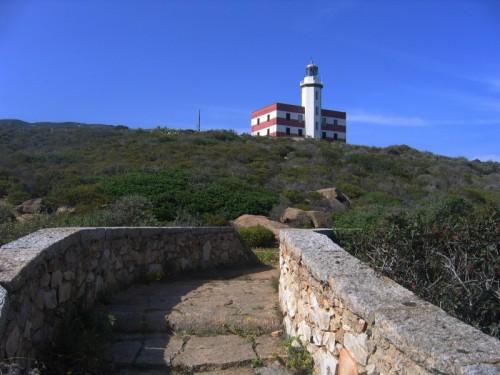 Isola del Giglio - Capel Rosso
