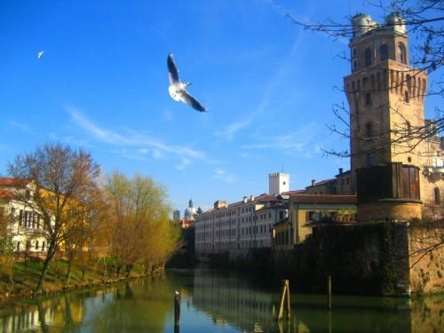 Padova - Volo d'angelo