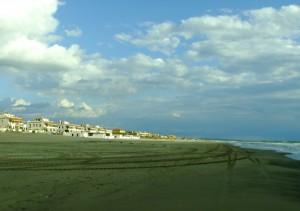 Tor san Lorenzo, litorale