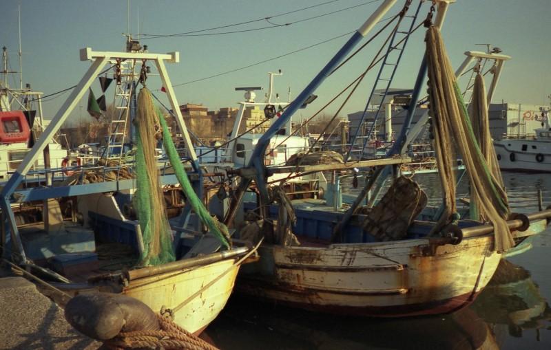 ''Vecchie barche'' - Fiumicino