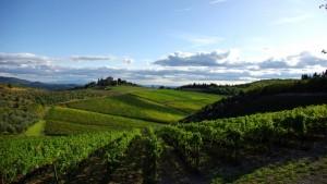 Panorama di San Donato in Peraro