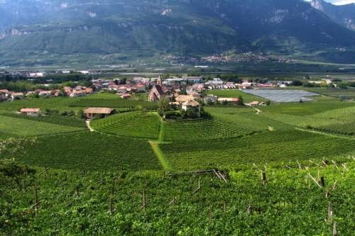 Egna - Vigneti nella valle dell'Adige