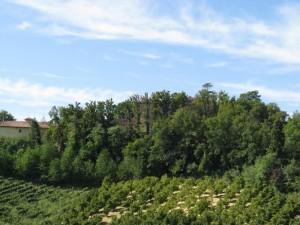 Il Castello di Settime dalla collina del cimitero