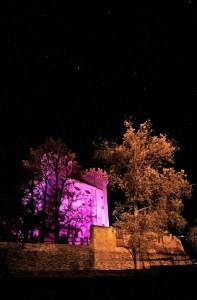 Aymavilles in rosa