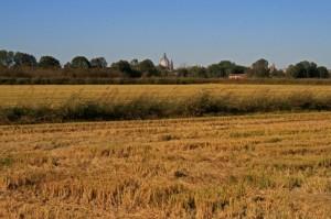 campi d'ottobre con vista su Pavia