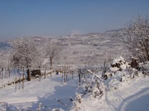 Paesaggio soavese dopo la nevicata
