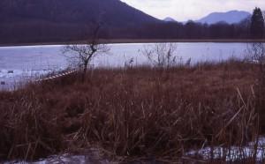 lago di ganna ghiacciato
