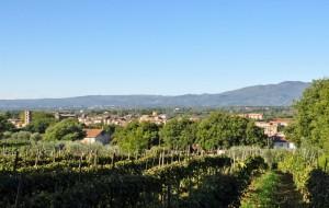 Vasanello - VT (Panorama)