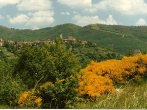 """Panorama primaverile di """"Solatio"""""""