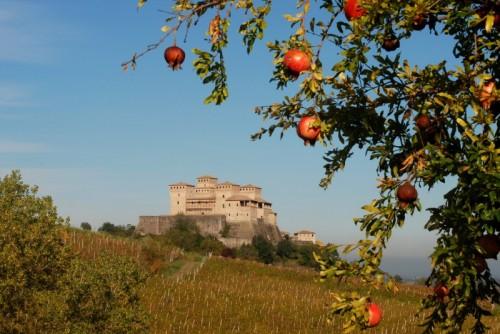 Langhirano - Il castello e il melograno