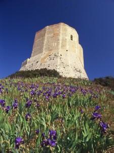 il castello sulla rupe