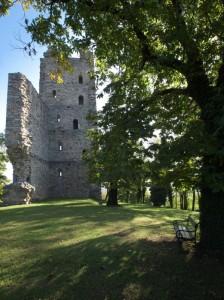 La Torre di Velate (XII secolo)